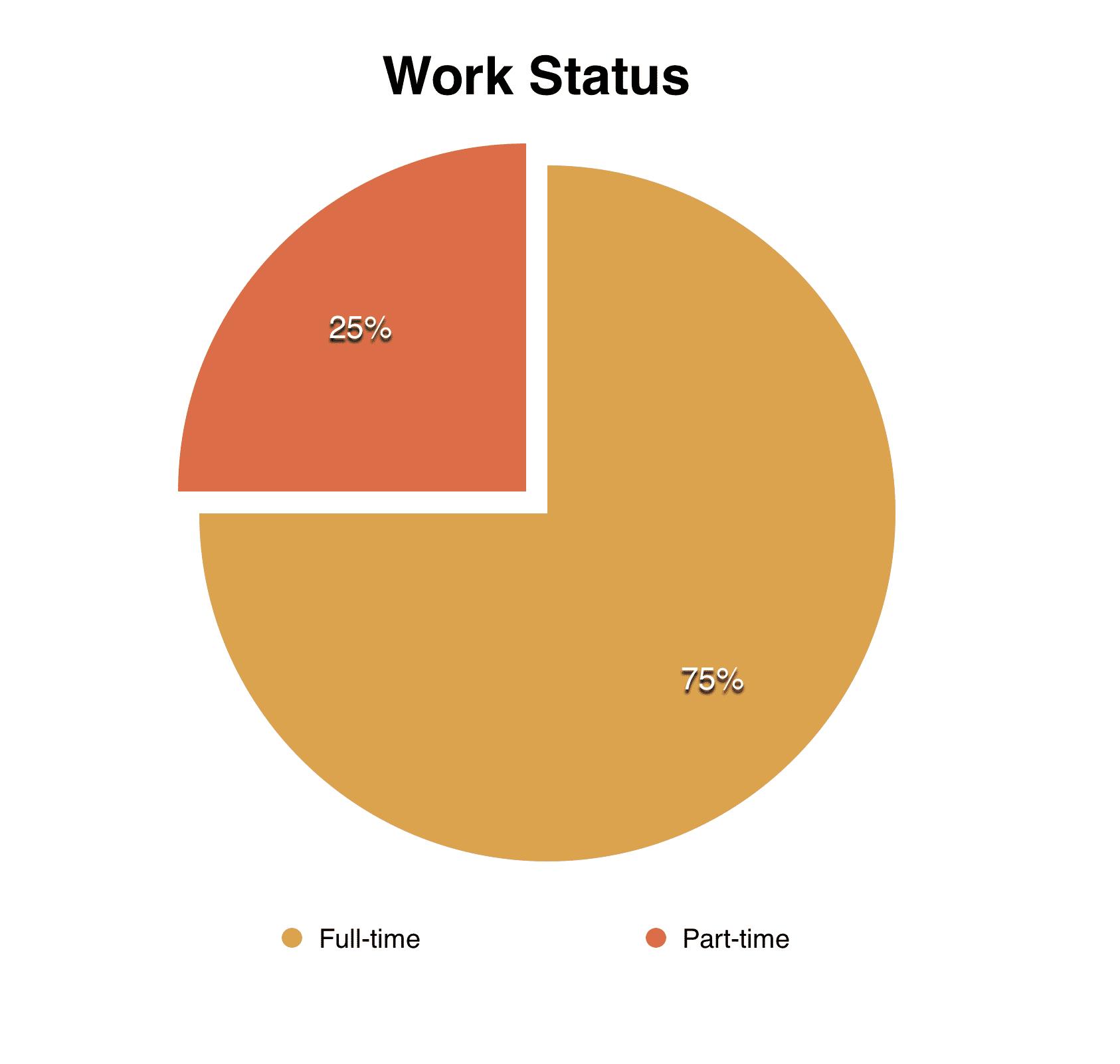 Photographer Work Status